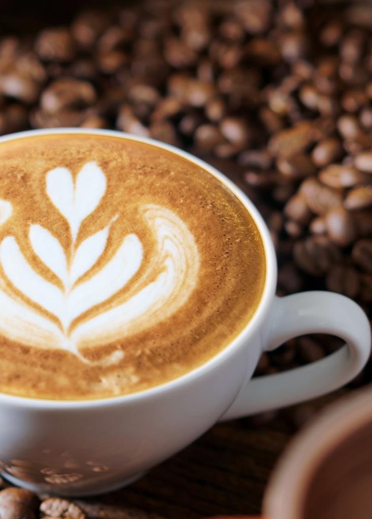 home caffetteria goody